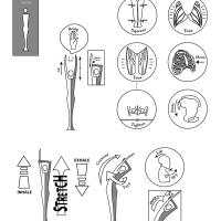 Crescent Pose Diagram