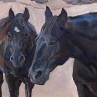 Equine_Black
